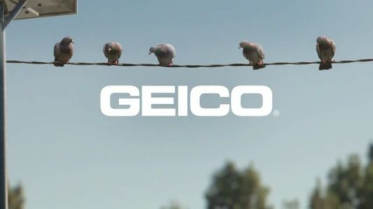 Geico Pigeons – Fire At Will